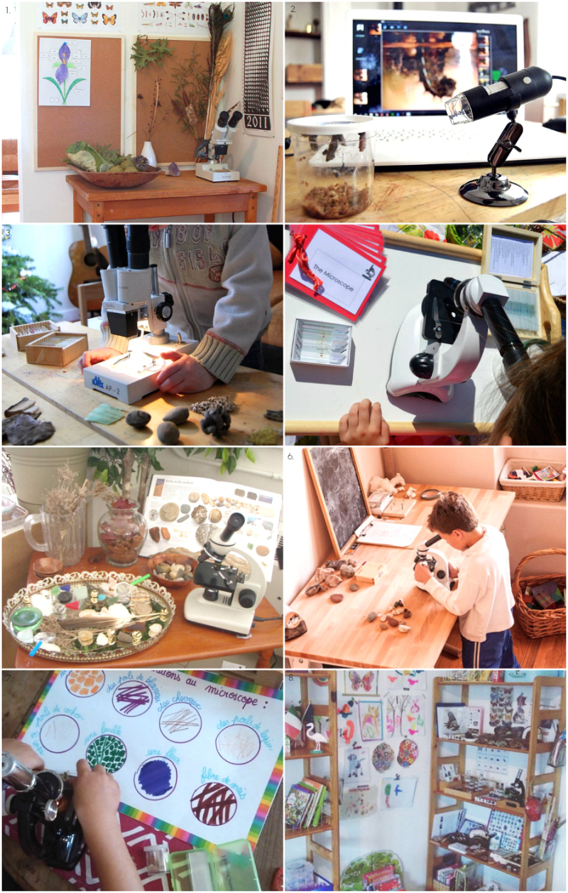 Microscope Areas and Nature Study Areas at How we Montessori