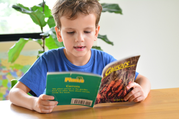 Otis reading Carrots book at How we Montessori