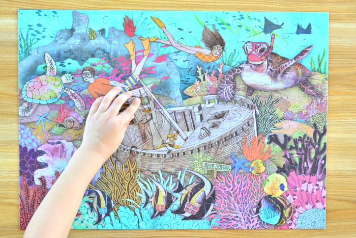 The Great Barrier Reef Puzzle, Millions of Monkeys Puzzle at How we Montessori