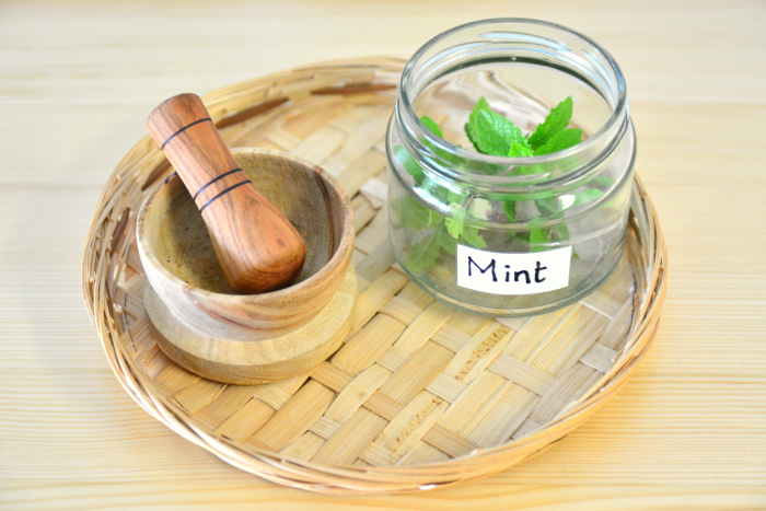 MELA activities mint smelling tray