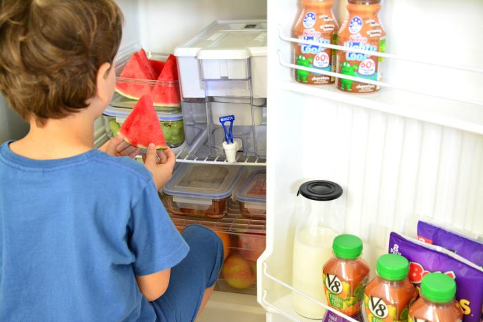Otis in the children's fridge at How we Montessori