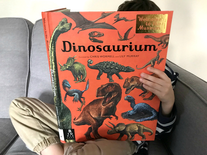 Dinosaurium  Welcome to the Museum at How we Montessori