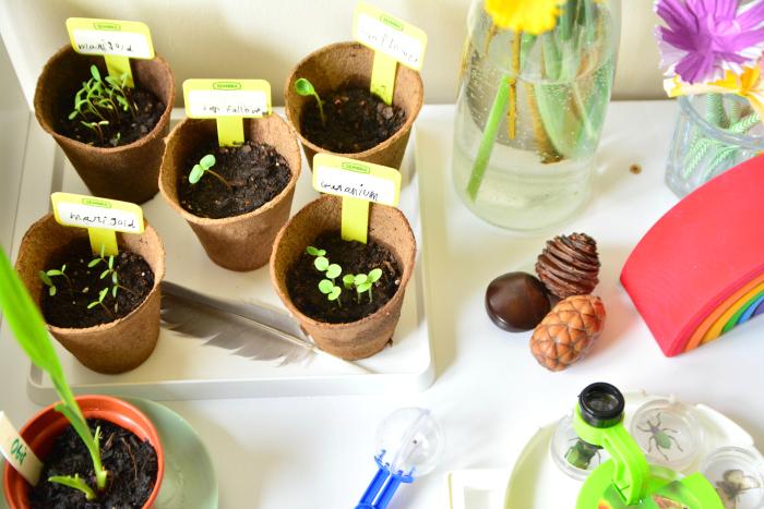 Otis' nature table at how we montessori