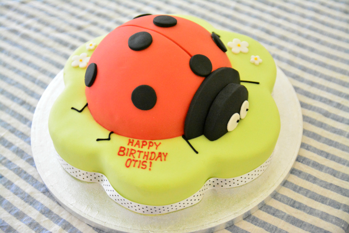 Otis' birthday cake April 2018
