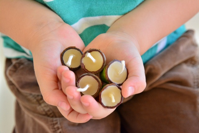 Beeswax Candles - in gum nuts at How we Montessori