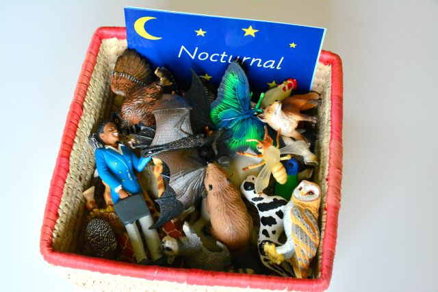 Montessori Nocturnal Diurnal Animal Basket at How we Montessori