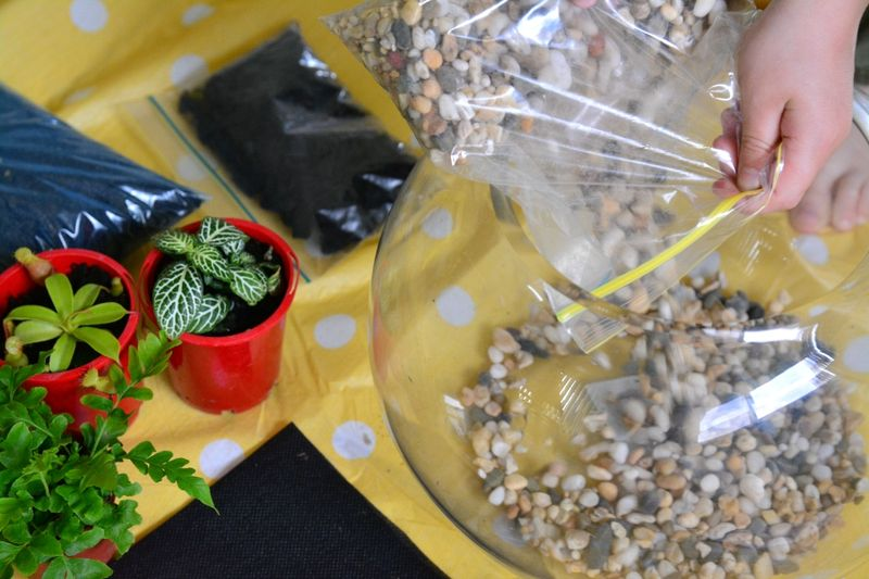 Otis making a terrarium at How we Montessori