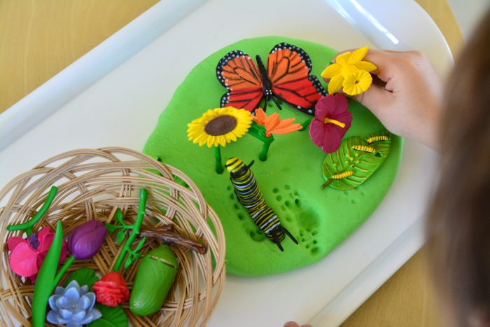 Otis with spring play dough activity flowers with butterfly lifecycle activity