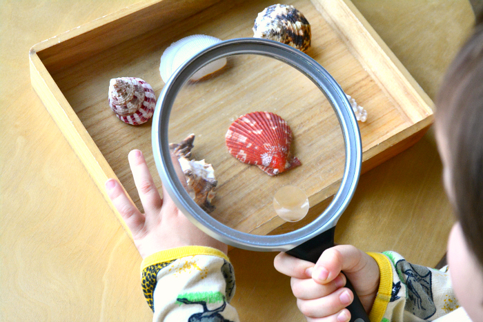 Five Minute Montessori Magnifying Glass at How we Montessori