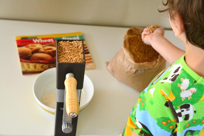 Milling spelt flower at How we Montessori Hand Crank Mill