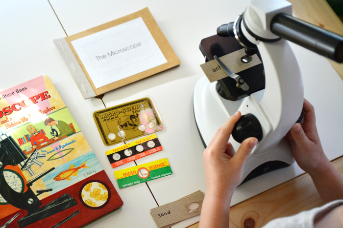 Using a microscope at How we Montessori