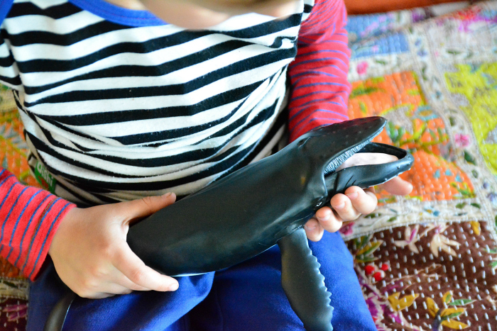 Otis with humpback whale at How we Montessori