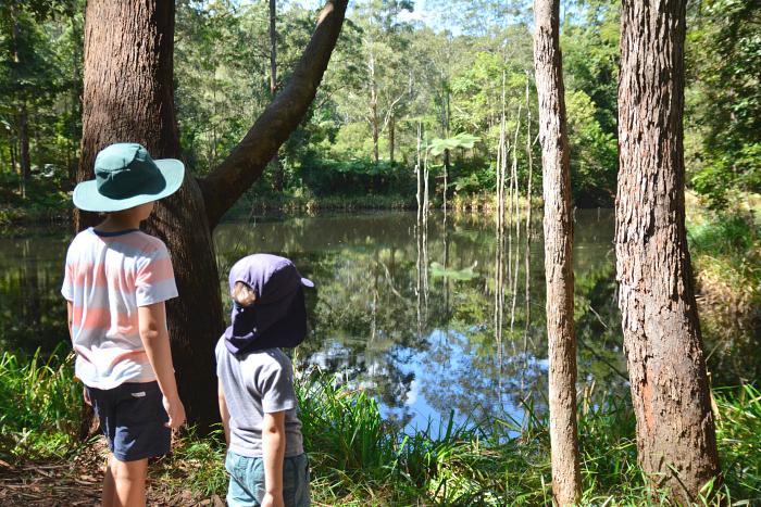 Walk at Maroochy Botanical Gardens September 2016