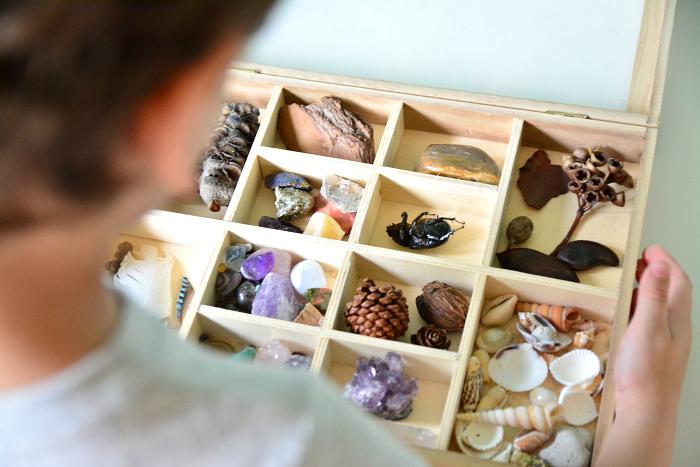 Nature box. How we Montessori.