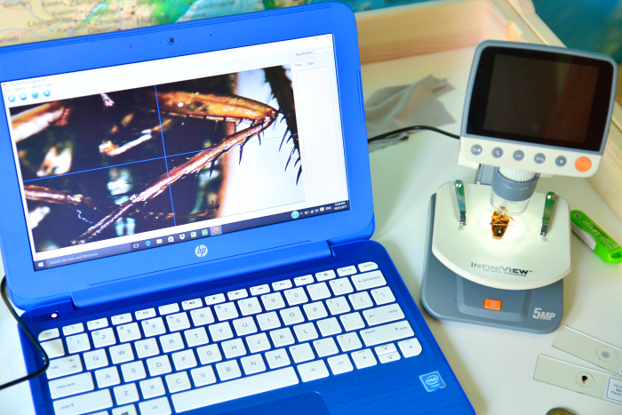Otis' microscope connected to lap top
