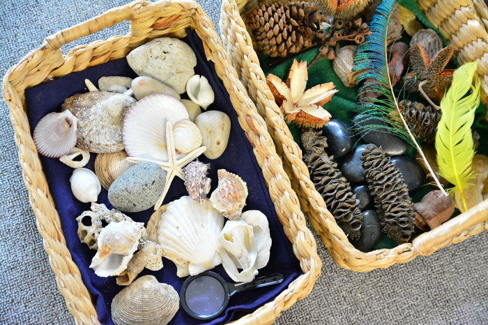 MELA activities  beach and bush treasure baskets