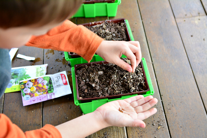 Otis watering seedlings  Yates School Fundraising at How we Montessori