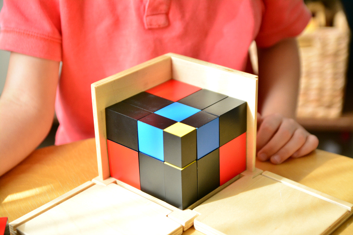 Trinomial Cube  Top View