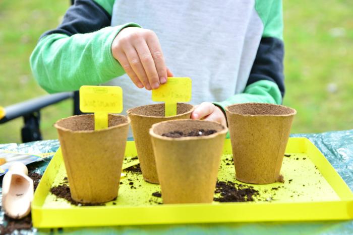 Spring plantings at HWM