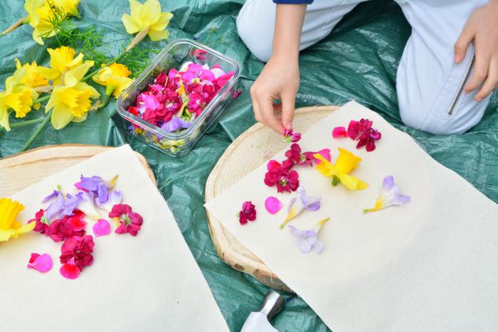 How we Montessori Hapa Zome