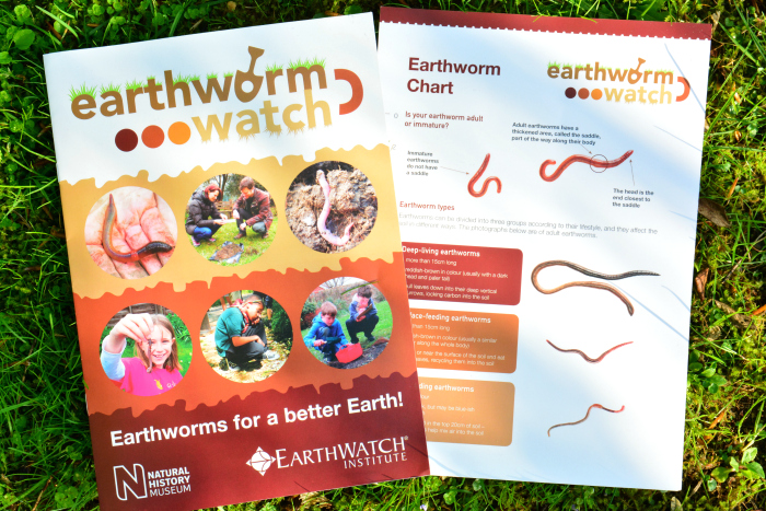 Earthworm Watch Survey at How we Montessori
