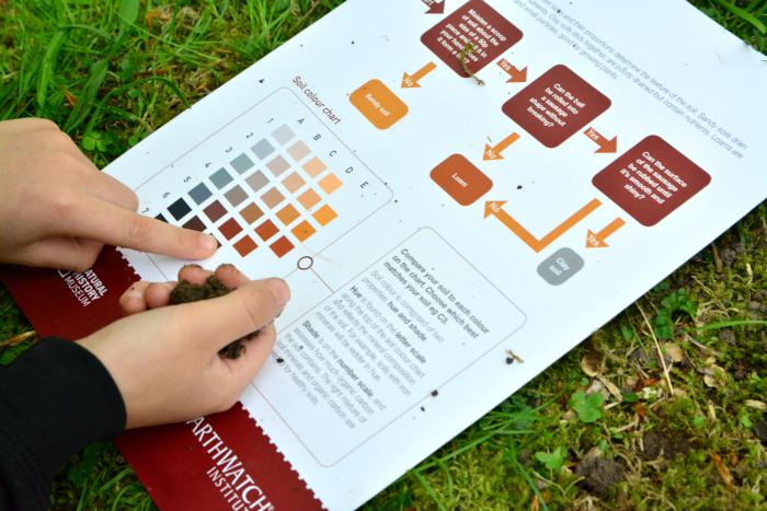 Earthworm Watch Survey at How we Montessori
