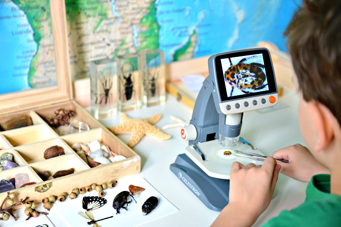 Otis nature collection - Australia at How we Montessori