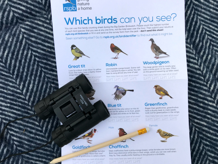 Big garden bird watch  rspb 2019 at how we Montessori
