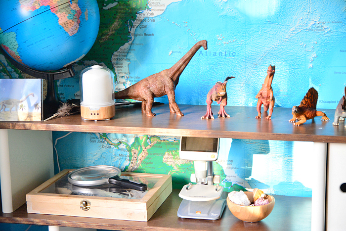 Dinosaurs on shelf at hwm