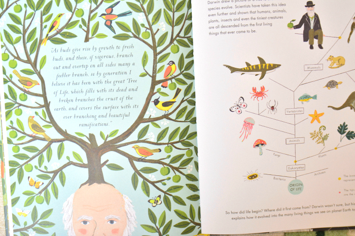 On the Origin of Species picture book at How we Montessori