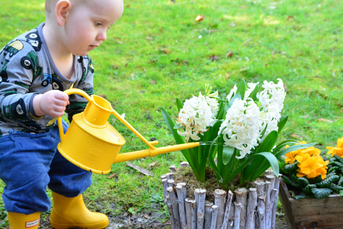 Otto watering spring flowers at How we Montessori 17 months