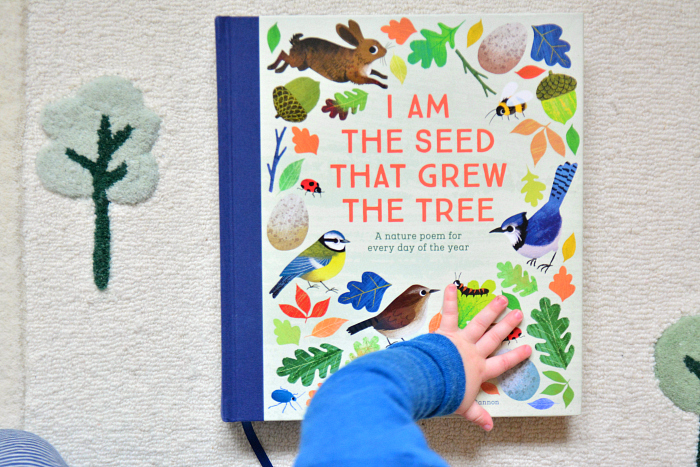 I am the seed that grew the tree  at How we Montessori