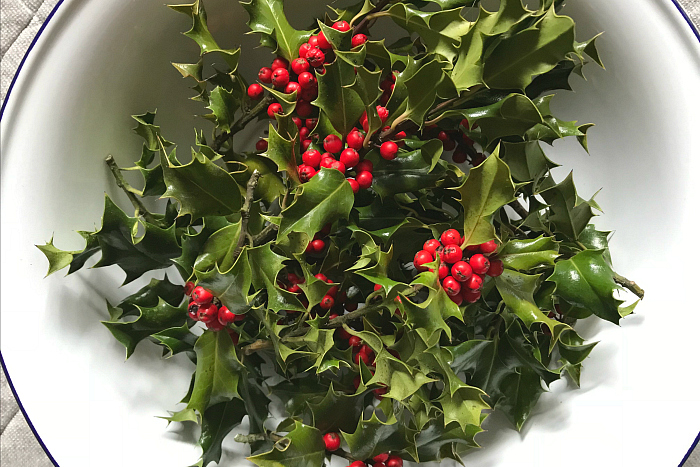 Christmas Holly at How we Montessori