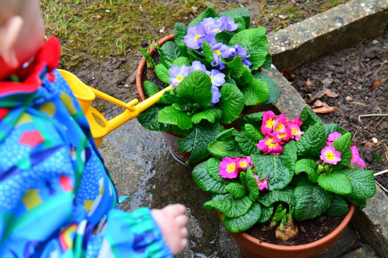 Otto watering winter garden at How we Montessori 15 months