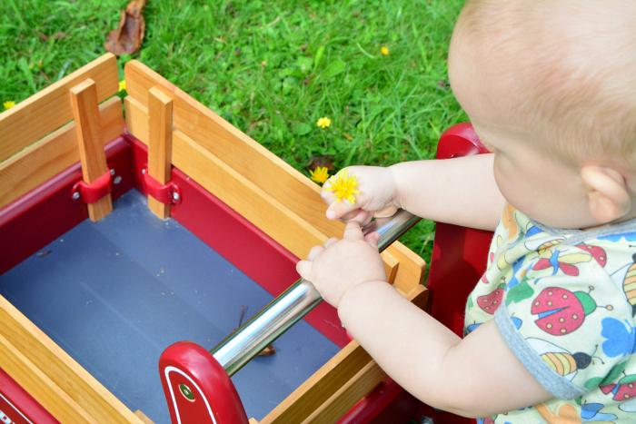 Radio Flyer Walker Wagon at How we Montessori 11 months