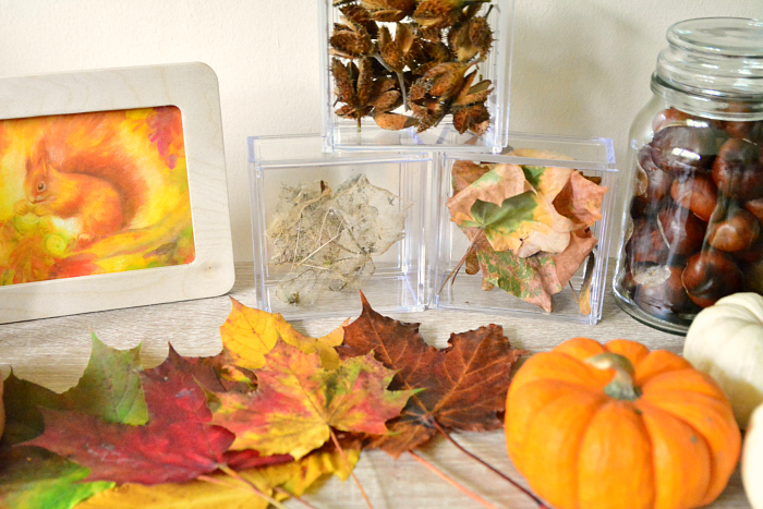 Autumn nature table at How we Montessori