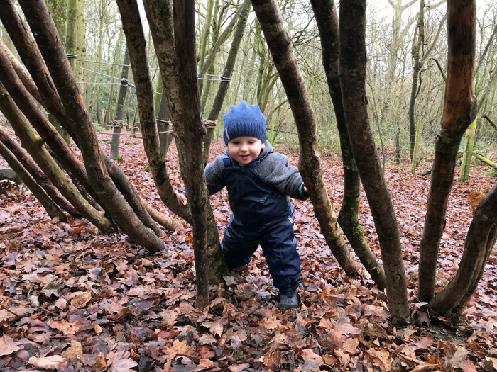 Exploring at Forest School How we Montessori 2019