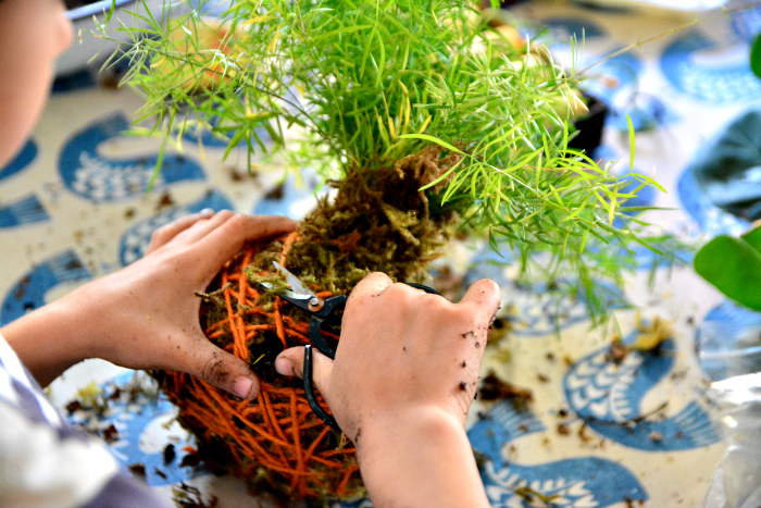 Kokedama with kids at How we Montessori