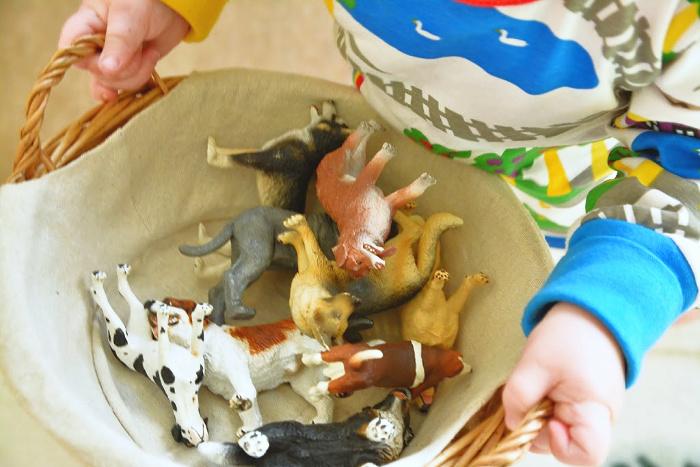 Otto using dog language basket at HWM 17 months