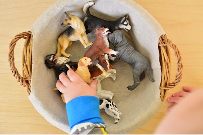 Otto with language dog basket at How we Montessori