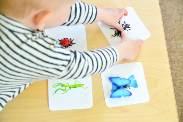 Montessori Matching Insects at How we Montessori  Otto 19 months