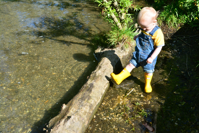 Otto on pond dipping platform at How we Montessori May 2019 20 months