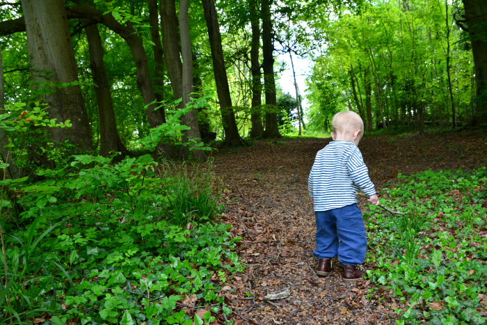 Forest Bathing at How we Montessori 20 months