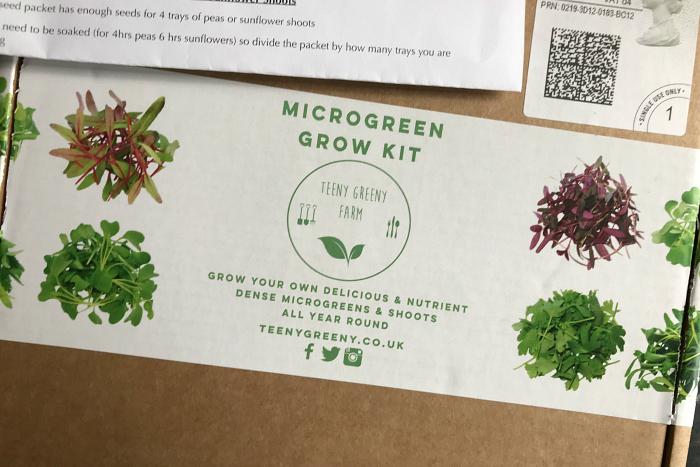 DIY local microgreens at How we Montessori