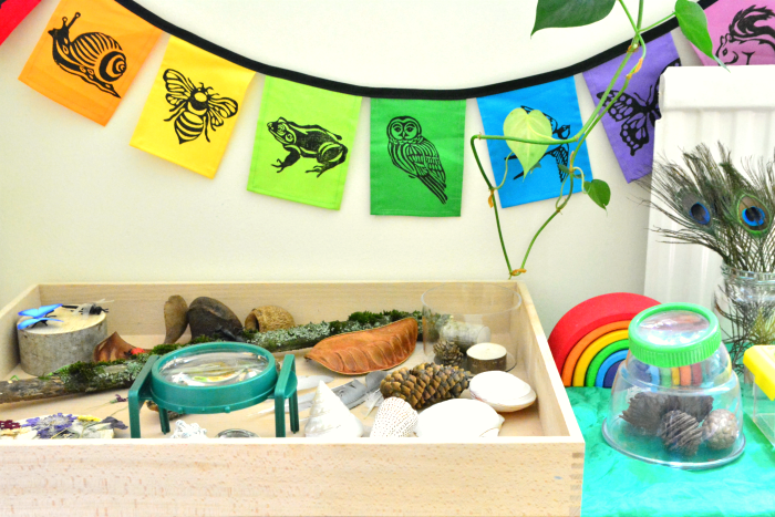 Montessori toddler nature tray at How we Montessori  nature observation table