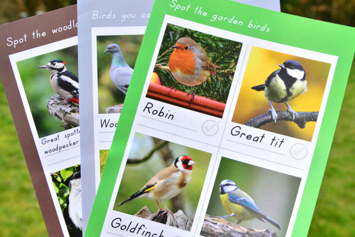 Montessori family bird subscription box at how we montessori bird identification