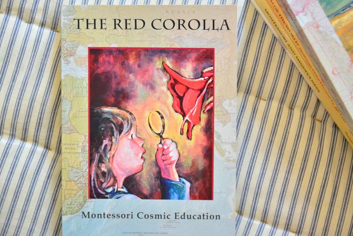 The Red Corolla Montessori Cosmic Education at How we Montessori