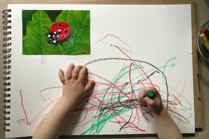 First matching with insects at How we Montessori