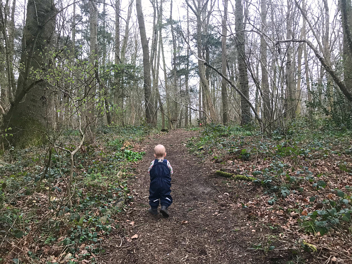 Otto walking to Forest School at How we Montessori 18 months