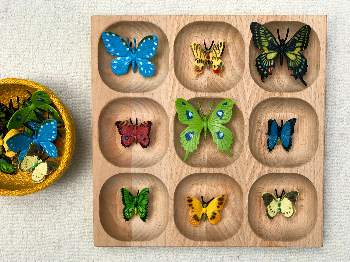 Butterfly model matching using wooden tray at How we Montessori Otto 22 months